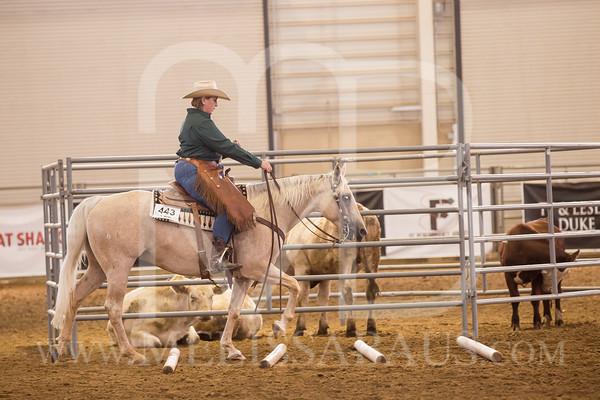 Ranch Pleasure
