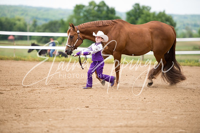 June 14 2014 PAHA SHOW-16