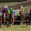 Race 4 - Won by 12 Popaway - 13yo Bay Mare owned by the Popaway Parnership ridden by Miss I. Robinson trained by Pauline Harkin
