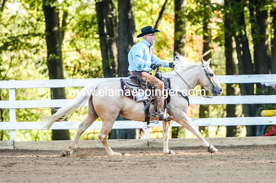 Ranch Reining-2-26