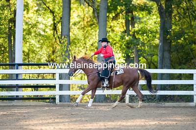 Ranch Reining-2-16
