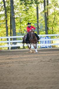 Ranch Reining-2-14