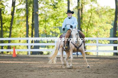 Ranch Reining-2-30