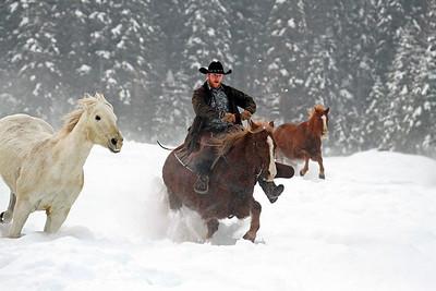 """Ride 'Em Cowboy"""