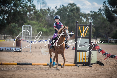 2016 Equine events