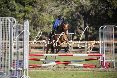 South West  Summer Showjumping Series: February 5th 2017