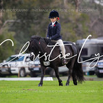 EWA Advanced Feeds Gala Hack & Working Hunter Show 2019