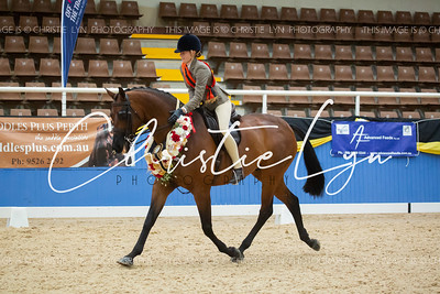Class 7: Child's Large Show Hunter over 16 hh