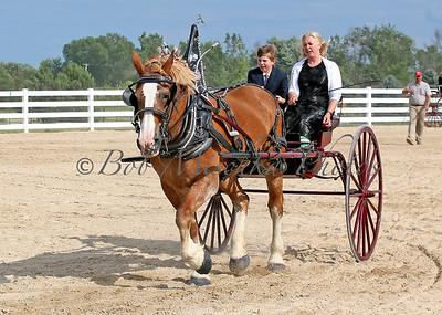 #4 Belg Cart_0414