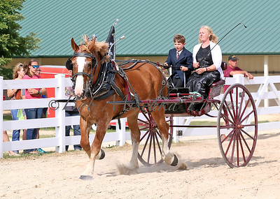 #4 Belg Cart_0141