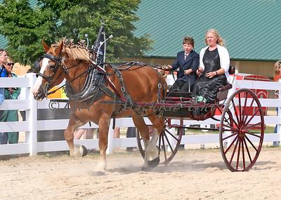 #4 Belg Cart_0259