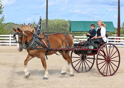 #4 Belg Cart_0455