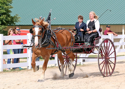 #4 Belg Cart_0142