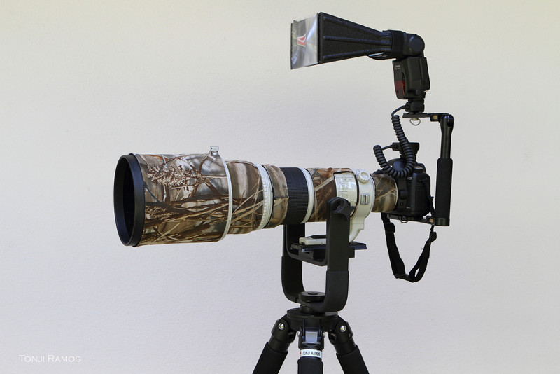 Tonji's main photography rig. <br /> <br /> Camera Body: Canon 5D Mk2. <br /> Lens: Canon 500mm f4<br /> Gimbal: Manfrotto 393<br /> Tripod: Feisol 3471<br /> TC: Canon 1.4x TC series II<br /> Flash: Canon 580 EXII<br /> <br /> <br /> This is my main birding rig. In this picture its set up for night time photography with a flash and better beemer. I usually don't have the flash connected. <br /> <br /> The Canon 500mm f4 is a great lens. Its very sharp and a good size. Its at the upper limit of what I can carry and near the upper limit of what an airline will allow on a plane. Its length is 15.2 inches without the hood. It can be handheld for a few shots but it performs best when on a sturdy tripod. <br /> <br />  I use a Canon 1.4xtc. Its not in this picture. But the 1.4x usually just stays stuck to the 500mm making it a 700mm. <br /> <br /> I use this rig 95 percent of the time. Maybe even more than 95%. It is light enough for shooting from a car. It is also light enough to carry on a tripod over a short distance. We have some lighter lenses. But I would rather take the weight penalty and carry my regular rig into almost any birding situation because usually the birds are too far rather than too near.  A lot of my favorite bird photos are with this rig so I don't want to change anything.  It is the smaller, easier to carry lenses that I end up leaving at home. <br /> <br /> Total weight:<br /> Camera : 0.9 kilos<br /> Lens: 3.856 kilos <br /> TC: 0.227 kilkos<br /> Gimbal: 1.588 kilos<br /> Tripod: 2.268 kilos<br /> <br /> Total weight is  8.845 kilograms (19.50 pounds) without flash.<br /> <br /> <br /> If I were in the market for a 500mm lens today Canon has recently announced a new 500mm f4 that is 1.5 pounds lighter and probably sharper. It is however also 50% more expensive and its still not available. But I am sure the new lens will be better in every way.<br /> <br /> note: I have since changed my gimbal to the 4th Generation Designs M 3.6