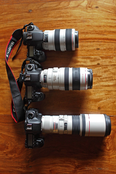 When terrain is too difficult and the super telephotos are too heavy we bring out our lighter lenses.   <b>70-300mm f4-5.6 L IS USM  - top 100-400mm f4.5-5.6 L USM - middle  400mm f5.6 L  USM - bottom</B>  The <b>70-300</b> is the newest release from Canon. It was just released in 2010 and has all the latest technology. It is the shortest and lightest of the three. This L lens is built tough, it is dust and water resistant.  It is only 1050 grams. It has the latest IS technology, 4 stops,  which makes it hand holdable. No need for a tripod with this lens.  Built like a proper L lens with a nice quality feel to all the moving parts.  It is very sharp and has great image quality. I like the pictures from this lens more than I like the pictures from the other two lenses. If the birds are not going to be too far, this is the lens we will pick up. We used this lens a lot in Tubbataha. I suspect we will use it often when we will be in dense forest. Paired with a crop body the focal length should be ok.   It has a minimum focusing distance of 1.2meters. This should make it be able to do double duty for butterflies and other interesting things in the forest.   It cannot use a canon TC.   Overall, it is easy to carry, great construction, very sharp photos, great images the only downside is the 300mm focal length. I would not get this as my first lens for birding. It is more of a superlight lens for when the terrain might be too difficult to bring a bigger lens.  Price $1500-1300  Brown Booby with 70-300mm L lens handheld: http://tonjiandsylviasbirdlist.smugmug.com/List/Boobies/BB/i-6XfRFhn/0/X2/IMG2872-X2.jpg     <b>100-400mm</b> is an older zoom, first released in 1998. It is 1380 grams. Around 30% heavier than the 70-300mm.  It has IS but not as good as the latest generation of IS. It can still be used without a tripod. It has a more useable focal length than the 70-300mm for birds. It is the lens we use while hiking to a site or in places where the 300mm and 500mm super telephoto lenses would be too heavy. We have taken some very nice pictures with this lens. It is a good starter lens for anyone planning to take up bird photography. It is an older design and I suspect a new version should be coming in a year or three. One negative aspect is the push and pull design which can get loose over time as I have seen in a friend's lens. Others have reported some complaints about the poor dust sealing and its lack of waterproofing. Hopefully they switch to a rotary design like the one they are using for the new 70-300mm L in the future. In the rain use a raincoat for this lens.   I would recommend this lens despite its shortcomings because it is very versatile. Spend some time checking the sharpness and focus of the lens before buying. Some lenses are sharper than others. I spent a whole day testing a lens, then I went home to check my test shots in my computer before I got our 100-400.   Price: $1600-1400.   An owl picture using the 100-400mm handheld  http://tonjiandsylviasbirdlist.smugmug.com/List/Owls/Grass-Owl/IMG2143/557928260_YrPjJ-XL.jpg     The <b>400mm f5.6 </b>is a fixed focal length lens. It is the longest lens among the three. It is slightly lighter than the 100-400 at 1250 grams. It is also the oldest design, having first been released in 1993. It has no IS. It is best used with a tripod. It can take very sharp pictures. It has the worst minumum focusing distance, almost three times of the 70-300mm. I like the contrast and colors from the 70-300mm more than the 400mm f5.6. It also does not have weather sealing so it needs to be covered when hiking. In my opinion it is not as versatile because of the lack of IS. For birds in flight with the fast shutter speeds it can be handheld with very good results. It focuses fast. I have seen lots of great pictures with this lens from other bird photographers. It is a very popular lens because of the good image quality and good value for money.   My main reservation with this lens is when the light gets low the lack of IS hinders the ability to handhold this lens. It ruins its portability by requiring you to use a tripod in difficult lighting.   This is another good lens for someone who wants to get into bird photography. When the new 400mm f5.6 finally comes out to replace this model it will probably have great weather sealing and the latest generation 4 stop IS, chances are it will also be double the price. This lens is an old design but a great value.  Price $1250  Owl picture 400mm f5.6 handheld:  http://tonjiandsylviasbirdlist.smugmug.com/List/Owls/Grass-Owl/IMG0656/556815148_BzH2C-XL.jpg