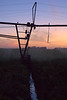 Pivot irrigation system operating at dusk in southern Manitoba