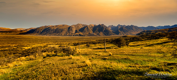 Golden hour in the Hakatere conservation park, Ashburton Lakes
