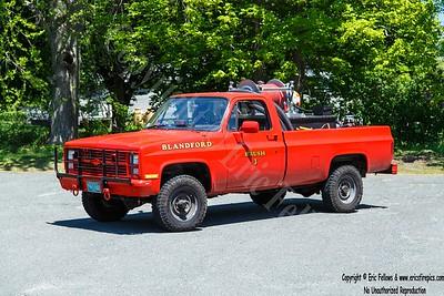 Blanford, Massachusetts - Brush 3