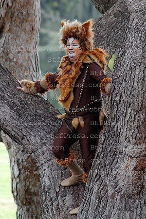 Eric Stonestreet in cat during the set of Modern Family on ABC in Los Angeles, Caifornia.