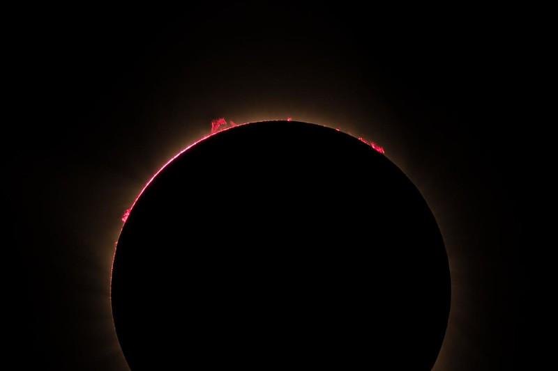 Eclipse Solar Prominences