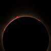 Eclipse Solar Prominences