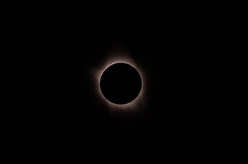 Eclipse Inner Corona and Prominences