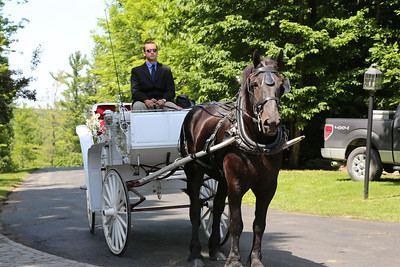 Heathers Horse Carriage Ride to Wedding