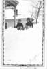 1936-Grafton Yard 1936 Winter