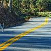 Road dog, WOOF....