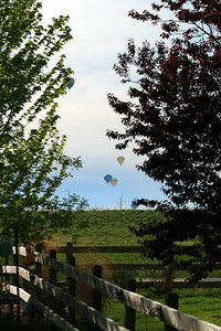 Balloons-029