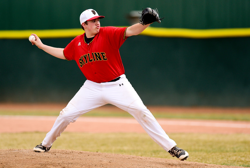 Skyline Erie High School Baseball