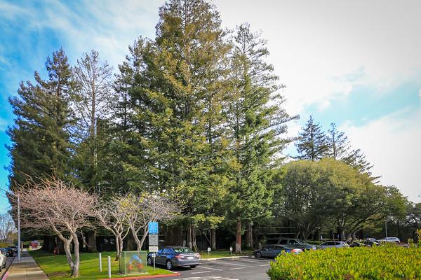 411 Borel Avenue, Suite 600, San Mateo