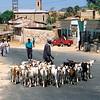 020 Road to Asmara