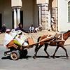 019 Asmara