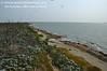 4/30/2011 - East shoreline, looking North