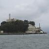 Alcatraz island, with migrating birds in flight.