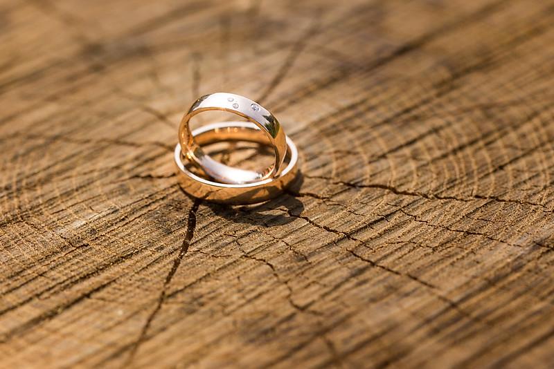 Jegygyűrű a fa évgyűrűi között