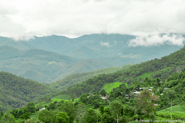 Large areas of forest protected by local villages