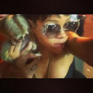 This photo from pop singer Rihanna's Twitter feed, shows another use for lorises: as photo props in busy tourist areas such as Phuket, Thailand. Pay a small fee and you can interact with these animals and take photos. <br /> <br /> As well as irresponsible, this also happens to be illegal in Thailand, and the authorities arrested the street vendor responsible.<br /> <br /> So what is the reality behind these situations?