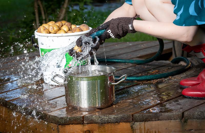 Finnishness - Free Bucket serie 6