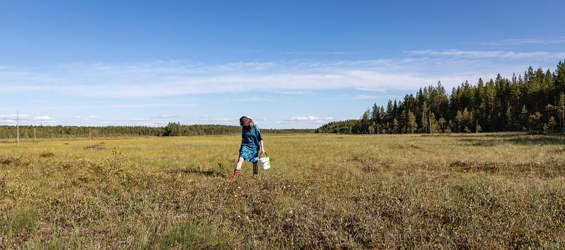 Finnishness - Free Bucket serie 4