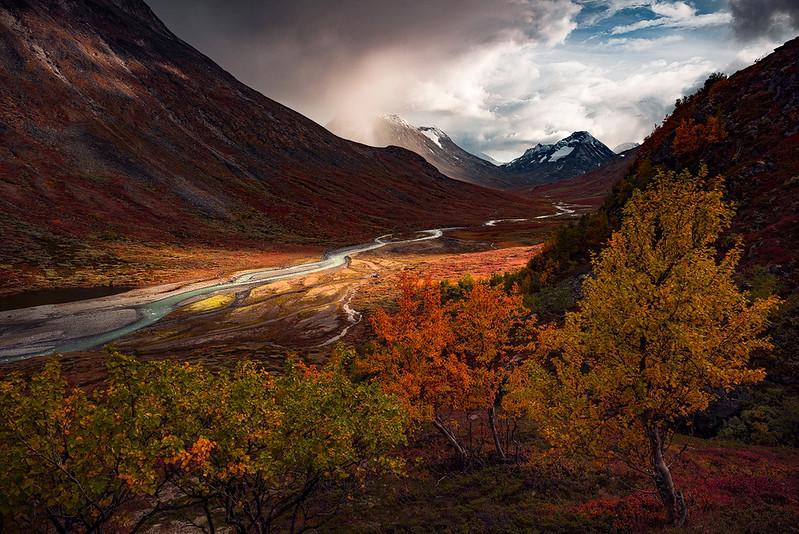 Epische Herbstlandschaft im Jotunheimen Nationalpark in Norwegen mit faszinierendem Licht und Schatten und farbiger, alpiner Landschaft mit verschiedenfarbigen knorrigen Birken im Vordergrund