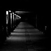 Dark  Lair
