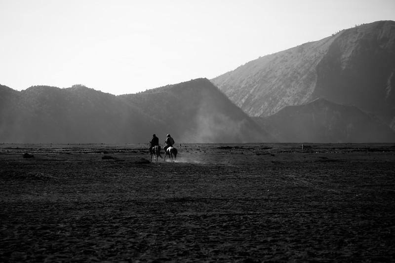 522  Black rider.jpg