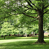 Parque em Filadélfia