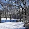 Central Park sob Neve