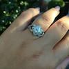 .50ctw Princess & Round Brilliant Diamond Dinner Ring 21