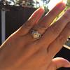 .50ctw Princess & Round Brilliant Diamond Dinner Ring 19