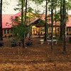 The Dove's Nest-7600 Scenic Heights Rd-Manchester Ga (turn by State Patol Office)