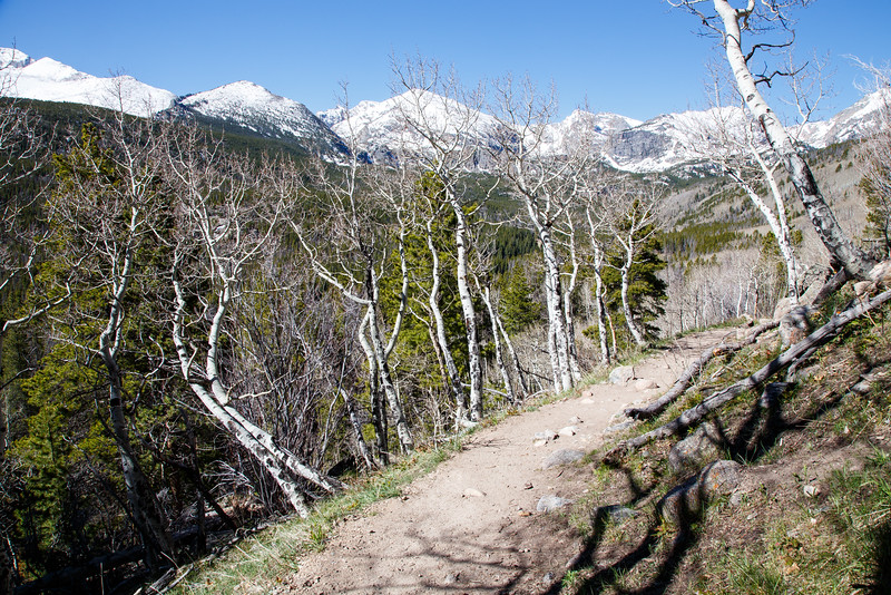 The trail to Bierstadt Lake